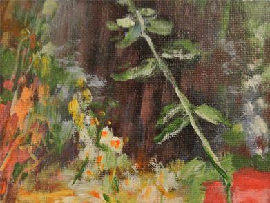 风景(14)